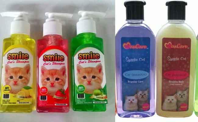 15 Perlengkapan Memelihara Kucing Yang Harus Siap Kucingklik Com