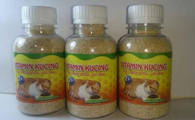 Vitamin Untuk Kucing