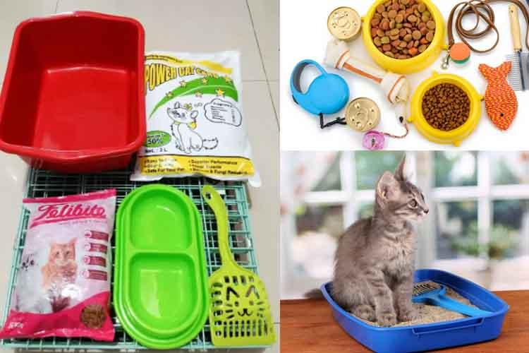 15 Perlengkapan Memelihara Kucing Yang Harus Siap