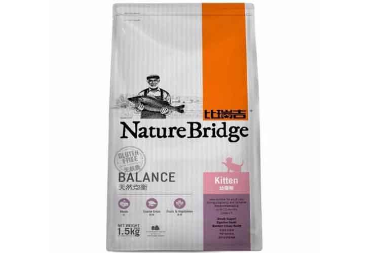 Nature Bridge Kitten