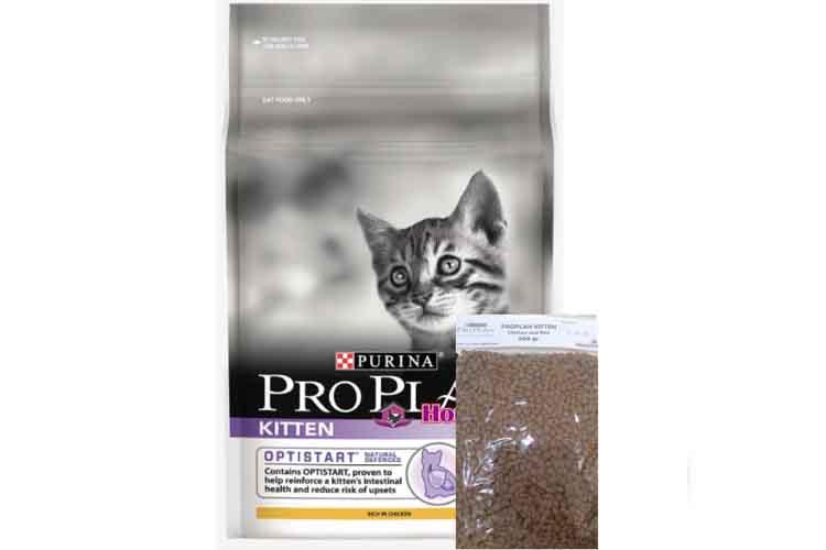 Proplan Kitten