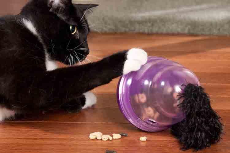 Mainan Kucing Cat Wobbler
