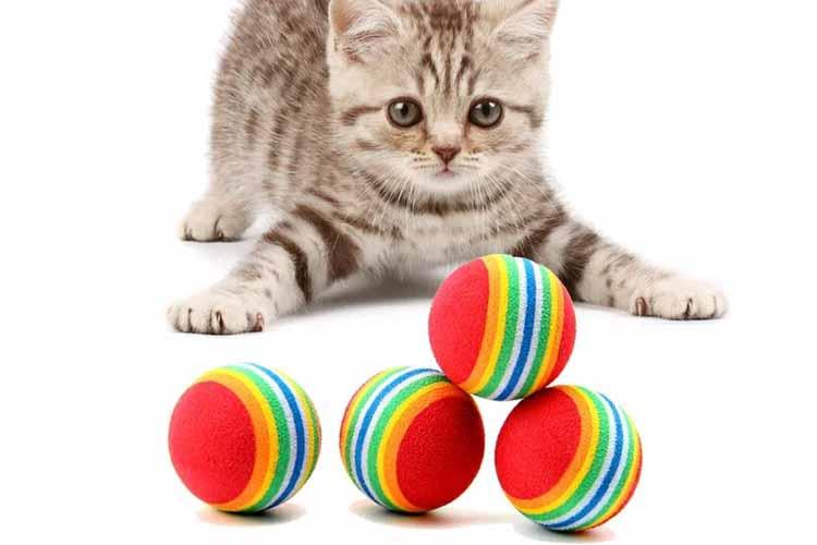 Mainan Kucing Rainbow Ball