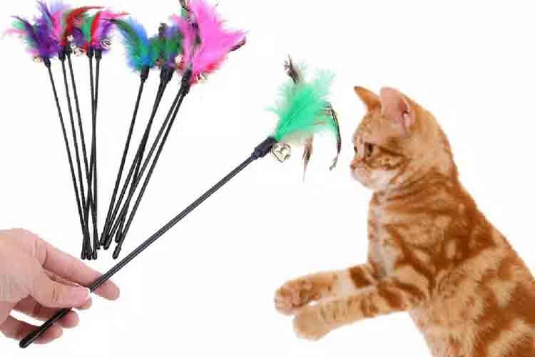 Mainan kucing Tongkat bulu dan lonceng