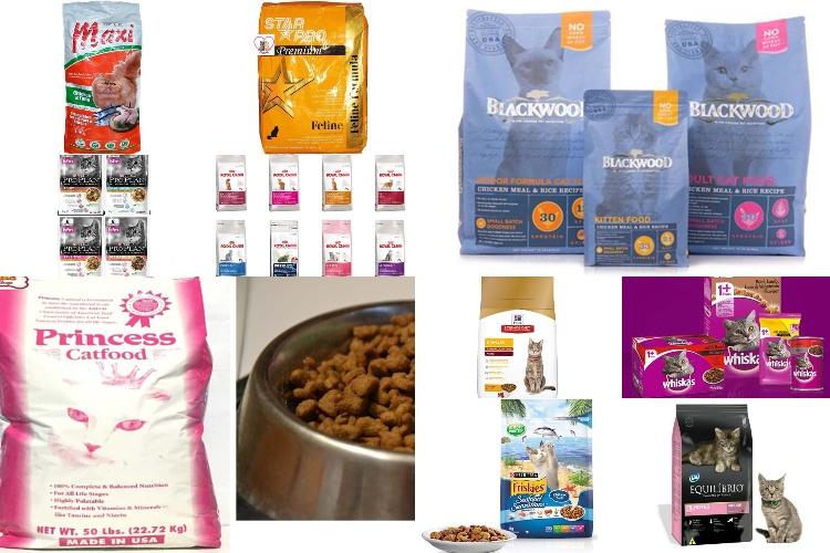 10 Merk Makanan Penggemuk Kucing Berkualitas