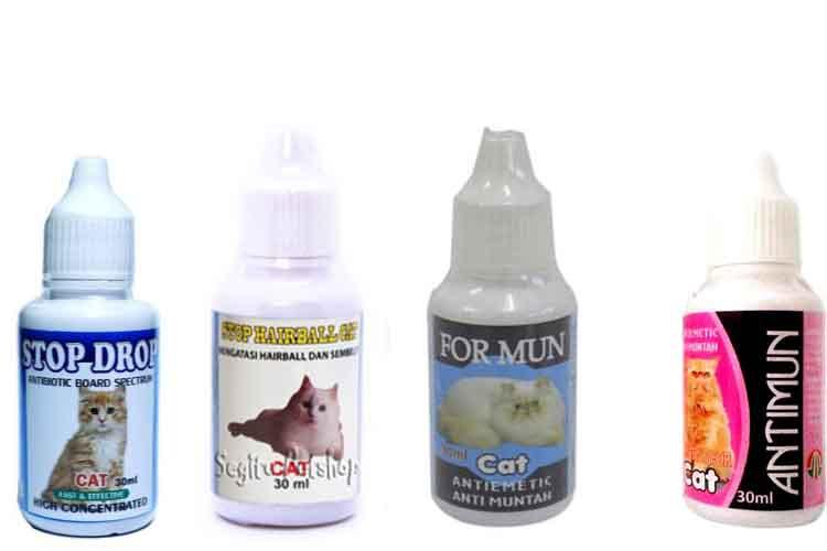 Obat Anti Muntah Untuk Kucing