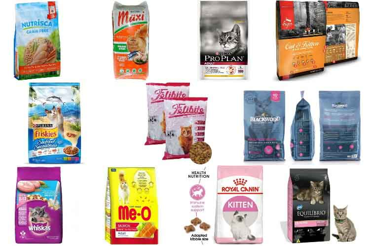 12 Rekomendasi Makanan Kucing Terbaik Dan Harganya