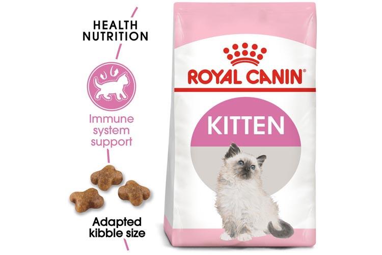 Makanan Kucing Terbaik Merk Royal Canin