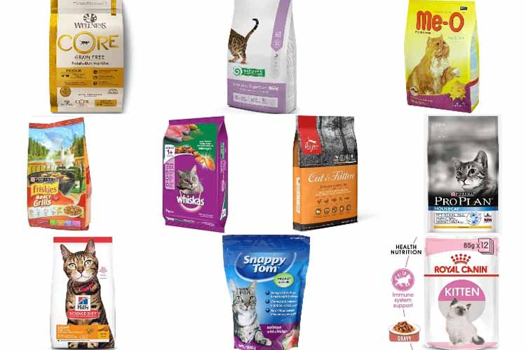 makanan kering kucing siam